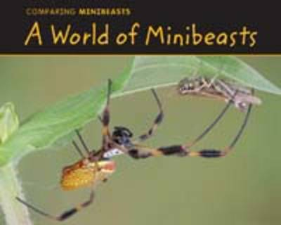 A World of Minibeasts Comparing Minibeasts by Charlotte Guillain, Nancy Dickmann