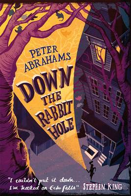 Down the Rabbit Hole An Echo Falls Mystery by Peter Abrahams
