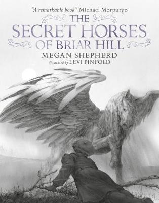 Cover for The Secret Horses of Briar Hill by Megan Shepherd