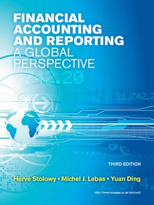 Financial Accounting and Reporting A Global Perspective by Michel Lebas, Herve Stolowy, Yuan Ding