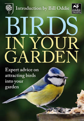 Birds in Your Garden by Malcolm Tait