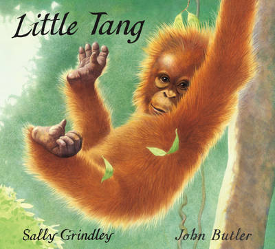 Little Tang by Sally Grindley