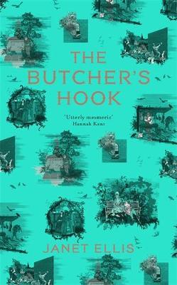 The Butcher's Hook by Janet Ellis