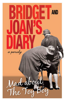 Bridget and Joan's Diary Mad About the Toy Boy by Bridget Golightly and Joan Hardcastle