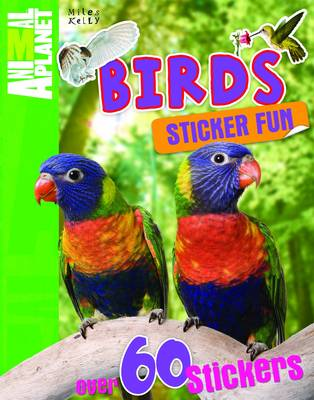 Sticker Fun Birds by Belinda Gallagher