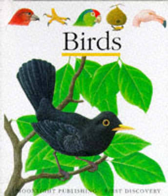 Birds by Pascale de Bourgoing, Gallimard Jeunesse