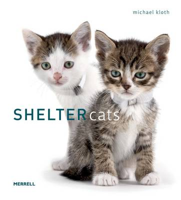 Shelter Cats by Michael Kloth