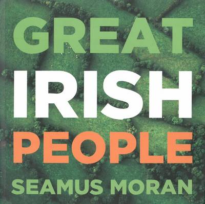 Great Irish People County by County Dictionary of Biography by Seamus Moran