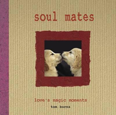 Soul Mates Love's Magic Moments by Tom Burns