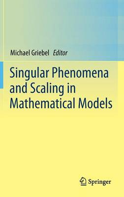 Singular Phenomena and Scaling in Mathematical Models by Michael A. Griebel