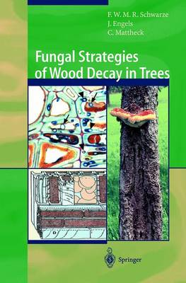 Fungal Strategies of Wood Decay in Trees by Francis W.M.R. Schwarze, Julia Engels, Claus Mattheck