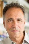 Anthony Horowitz - Author Picture
