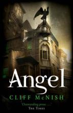 Cover for Angel by Cliff Mcnish