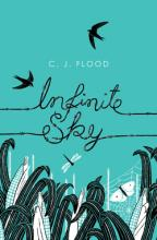 Infinite Sky by C. J. Flood