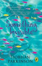 Cover for Something Invisible by Siobhan Parkinson