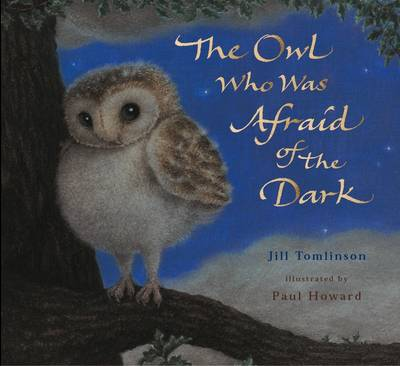 The Owl Who Was Afraid Of The Dark Picture Book by Jill Tomlinson