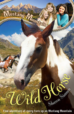 Mustang Mountain: Wild Horse by Sharon Siamon