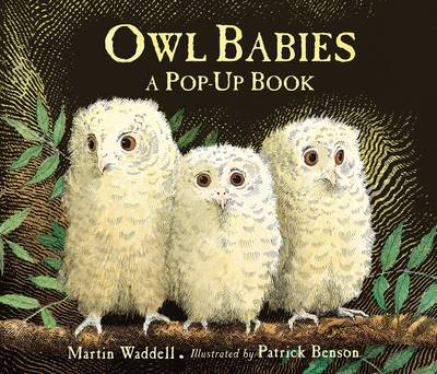 Owl Babies - Pop-Up by Martin Waddell