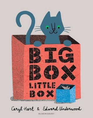 Cover for Big Box Little Box by Caryl Hart