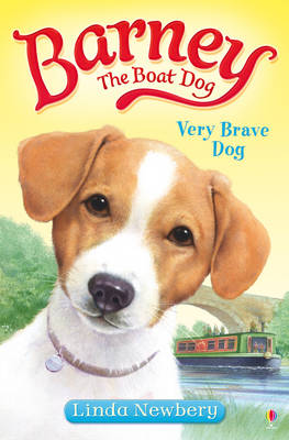 Barney the Boat Dog 1: Very Brave Dog by Linda Newbery