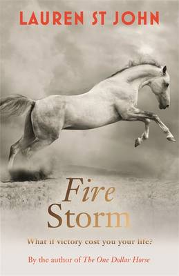 Cover for Fire Storm by Lauren St.John
