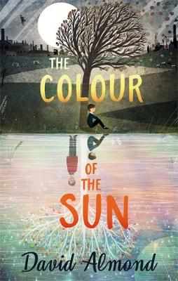 Cover for The Colour of the Sun by David Almond