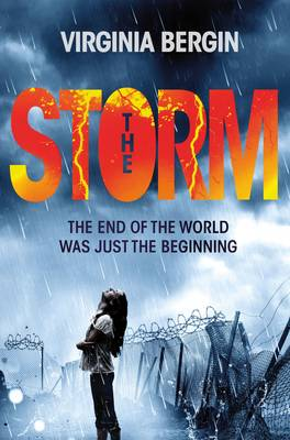 Cover for The Storm by Virginia Bergin