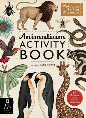 Animalium Activity Book by Katie Scott