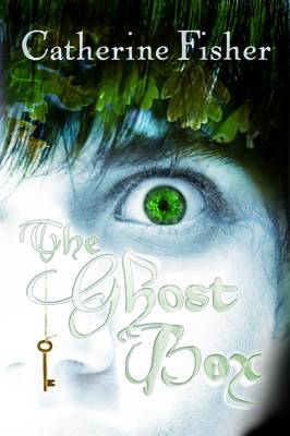 Cover for The Ghost Box by Catherine Fisher
