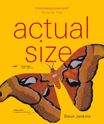 Cover for Actual Size by Steve Jenkins