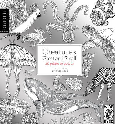 The Field Guide: Creatures Great and Small by Lucy Engelman
