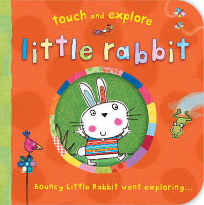 Cover for Touch and Explore: Little Rabbit by Katie Saunders