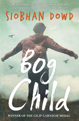 Cover for Bog Child by Siobhan Dowd