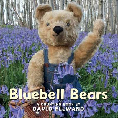 Bluebell Bears A Counting Book by David Ellwand
