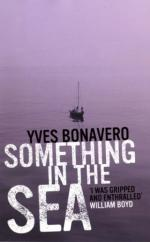 Cover for Something in the Sea by Yves Bonavero