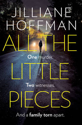 Cover for All the Little Pieces by Jilliane Hoffman