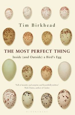 The Most Perfect Thing Inside (and Outside) a Bird's Egg by Tim Birkhead