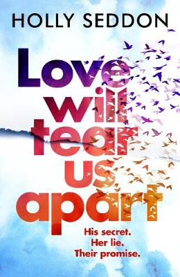 Cover for Love Will Tear Us Apart by Holly Seddon