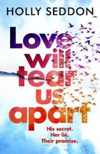 Book Cover for Love Will Tear Us Apart by Holly Seddon