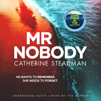 Cover for Mr Nobody by Catherine Steadman