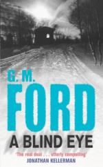 A Blind Eye by G M Ford