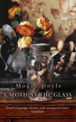 A Moth at the Glass by Mogue Doyle