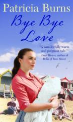 Cover for Bye Bye Love by Patricia Burns