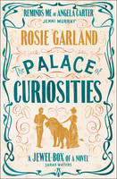 Cover for The Palace of Curiosities by Rosie Garland