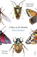 Cover for A Buzz in the Meadow by Dave Goulson
