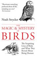 Cover for The Magic and Mystery of Birds The Surprising Lives of Birds and What They Reveal About Being Human by Noah Strycker