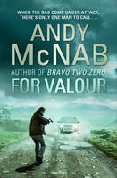 Cover for For Valour by Andy McNab