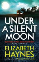 Cover for Under a Silent Moon by Elizabeth Haynes