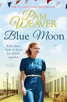 Cover for Blue Moon by Pam Weaver