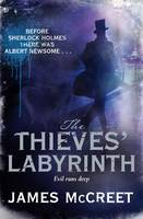 Cover for The Thieves' Labyrinth by James McCreet